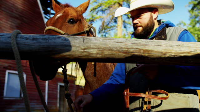 stockvideo's en b-roll-footage met american male horse rider in corral dude ranch - ranch