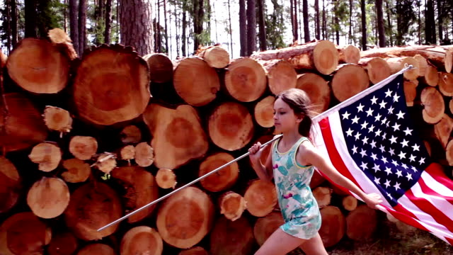 stockvideo's en b-roll-footage met -amerikaans hout - gids