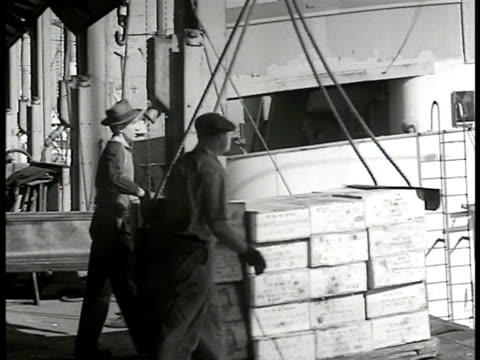 American workers lowering crates on crane in shipping dock warehouse New York CU Men stacking crates 'Veillon Freres Bordeaux Produce of France'