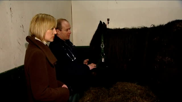 amersham horses may have been stolen traquair along with andy williamson andy williamson interview sot as shows traquair badly maltreated horse... - トラクエア点の映像素材/bロール
