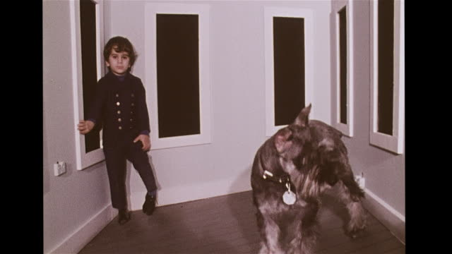 ames room, trapezoid shaped chamber w/ dog & boy appearing to grow & shrink when switching places in space. faded color, distance, depth,... - optical illusion stock videos & royalty-free footage