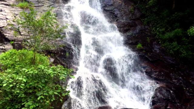 amicalola falls close up view - georgia us state stock videos & royalty-free footage