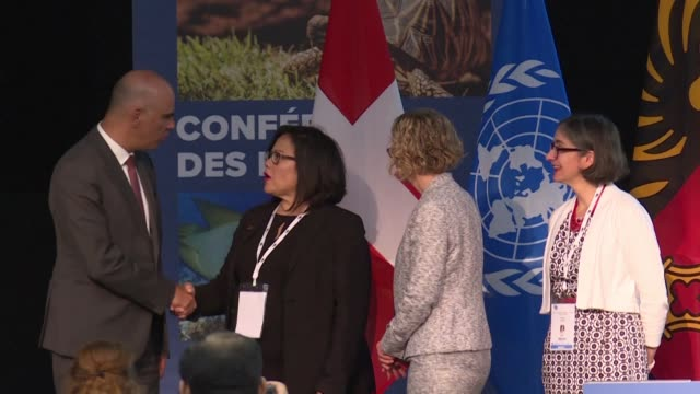 amid growing alarm over accelerating extinctions a major international conference opens in geneva aiming to tighten rules on trade in elephant ivory... - tighten stock videos and b-roll footage