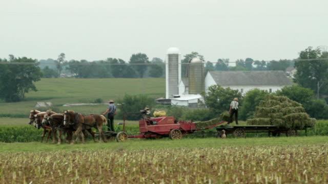 amish famiglia agricoltori baling fieno - amish video stock e b–roll