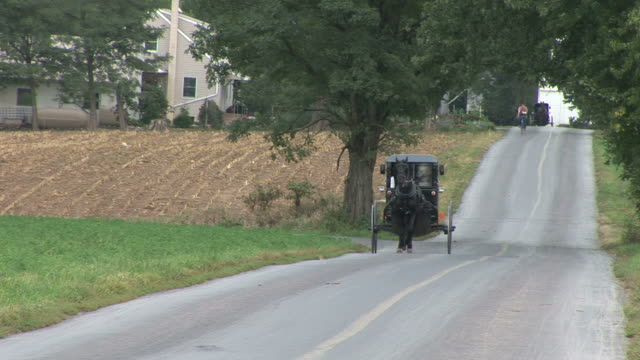 vidéos et rushes de amish horse and buggy next to farm in lancaster, pennsylvania - amish