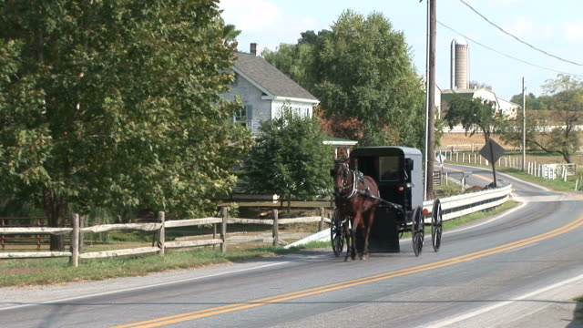 amish horse and buggy next to farm in lancaster, pennsylvania - ペンシルベニア州点の映像素材/bロール