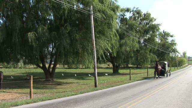 vidéos et rushes de amish horse and buggy next to farm in lancaster, pennsylvania - lancaster pennsylvanie