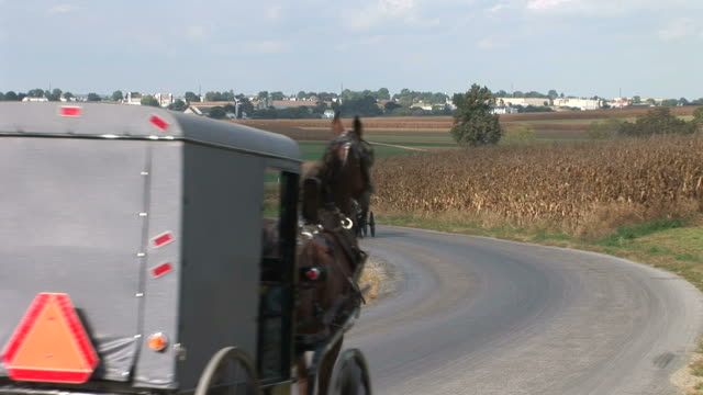 vídeos de stock e filmes b-roll de amish horse and buggy next to farm in lancaster, pennsylvania - amish