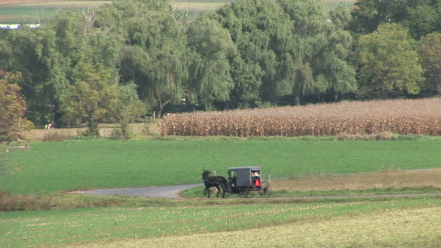 Amish horse and buggy next to farm in Lancaster, Pennsylvania