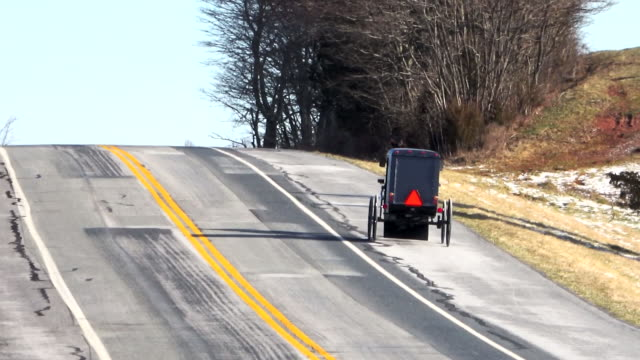vidéos et rushes de amish horse and buggy on a country road - amish