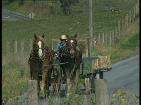 vídeos de stock e filmes b-roll de amish man on horse and cart travel towards camera - amish