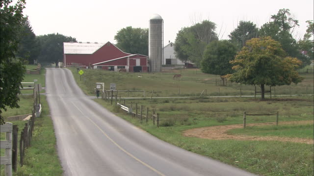 Amish people ride in a horse-drawn buggy toward a farm.