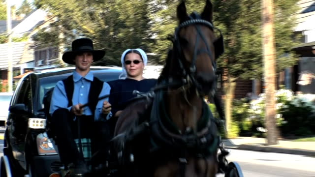 vídeos de stock, filmes e b-roll de amish sector life in pennsylvania - amish