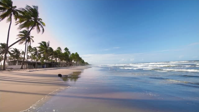 stockvideo's en b-roll-footage met hd among the waves in a tropical white sand beach - bahama's