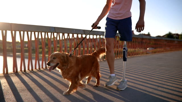 amputee and a golden retriever crossing a bridge - prosthetic equipment stock videos & royalty-free footage