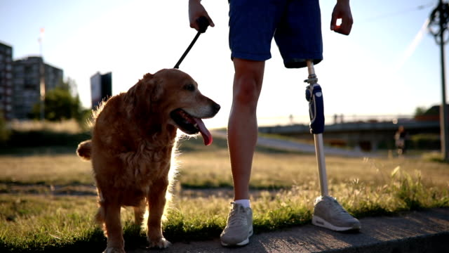 amputee enjoying the company of his golden retriever - prosthetic equipment stock videos & royalty-free footage
