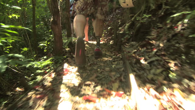 amputee hiking through the jungle - andere clips dieser aufnahmen anzeigen 1168 stock-videos und b-roll-filmmaterial
