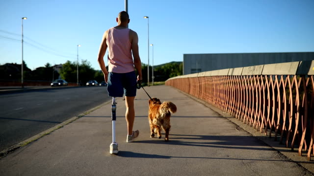amputee walking his dog over the bridge - amputee stock videos & royalty-free footage