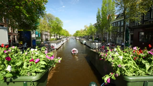 amsterdam with canal and flowers - canal stock videos & royalty-free footage