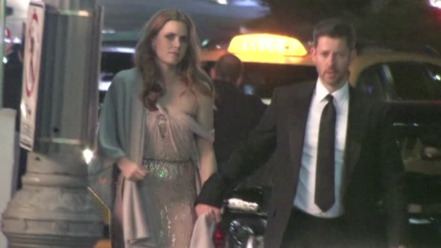 Amy Adams and Darren Le Gallo at LACMA in Los Angeles on 11/5/2011