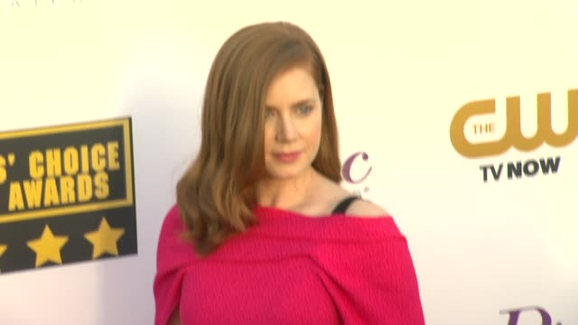 Amy Adams at 19th Annual Critics' Choice Movie Awards Arrivals at The Barker Hanger on in Santa Monica California