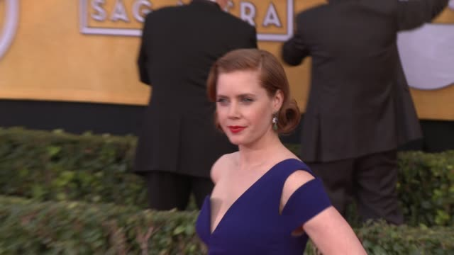 amy adams at 20th annual screen actors guild awards - arrivals at the shrine auditorium on in los angeles, california. - shrine auditorium stock videos & royalty-free footage