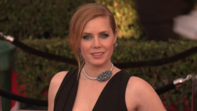 Amy Adams at 23rd Annual Screen Actors Guild Awards Arrivals in Los Angeles CA