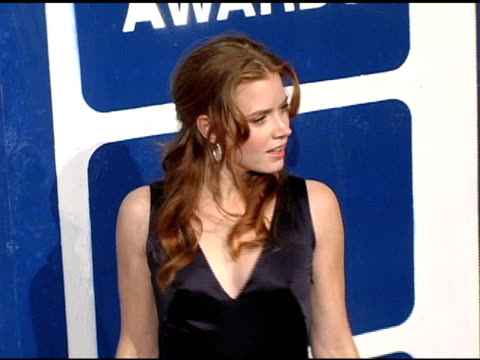 Amy Adams at the IFP's 15th Annual Gotham Awards arrivals at Pier 60 at Chelsea Piers in New York New York on November 30 2005