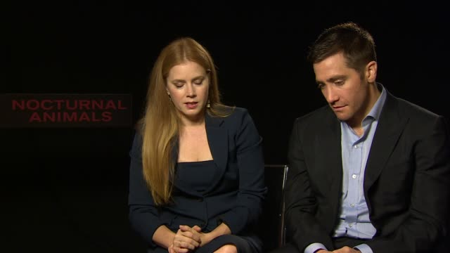 interview amy adams jake gyllenhaal on working with tom ford meeting tom in person the script the plot playing with reality getting the script on... - working animals stock videos & royalty-free footage