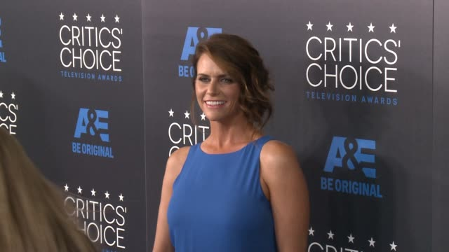 amy landecker at the 2015 critics' choice television awards at the beverly hilton hotel on may 31, 2015 in beverly hills, california. - 放送テレビ批評家協会賞点の映像素材/bロール