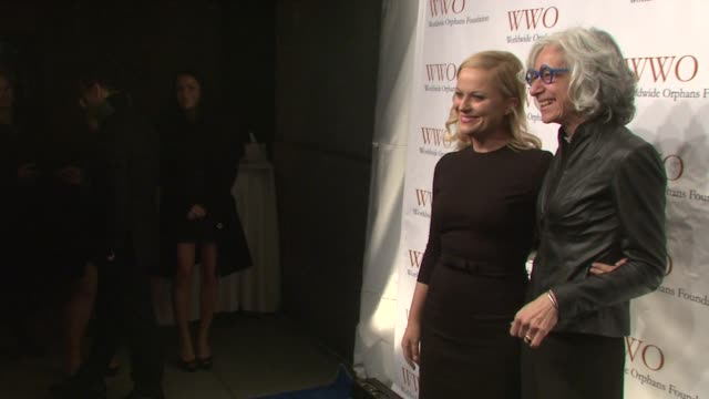 amy poehler and jane aronson at worldwide orphans 15th anniversary benefit gala at cipriani wall street on november 13 2012 in new york new york - cipriani wall street stock videos & royalty-free footage