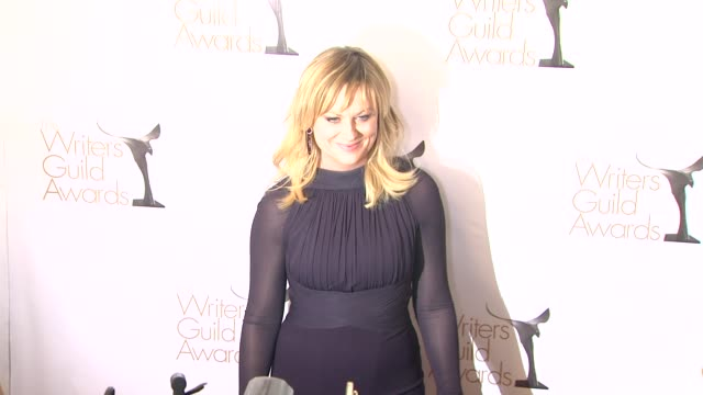 amy poehler at 2013 writers guild awards amy poehler at 2013 writers guild awards at j.w. marriot at l.a. live on february 17, 2013 in los angeles,... - エイミー・ポーラー点の映像素材/bロール
