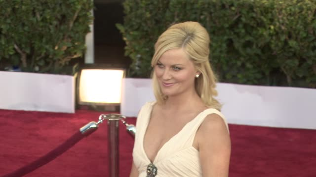 amy poehler at the 15th annual screen actors guild awards part 2 at los angeles ca. - エイミー・ポーラー点の映像素材/bロール