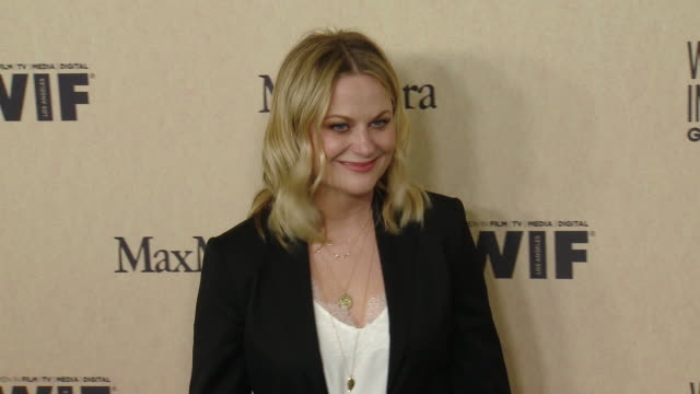 amy poehler at the 2019 women in film annual gala presented by max mara with additional support from partners delta air lines and lexus - delta air lines stock-videos und b-roll-filmmaterial
