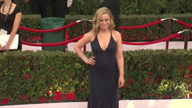 amy poehler at the 21st annual screen actors guild awards - arrivals at the shrine auditorium on january 25, 2015 in los angeles, california. - shrine auditorium stock videos & royalty-free footage