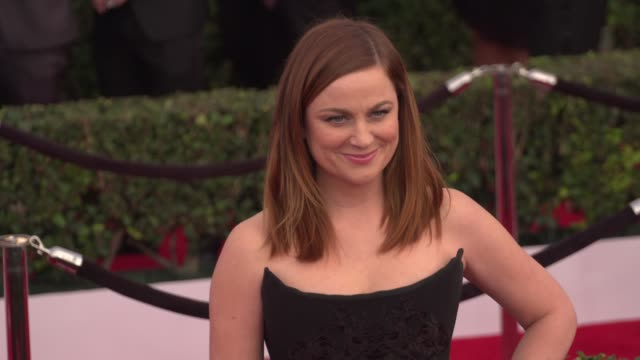 amy poehler at the 22nd annual screen actors guild awards - arrivals at the shrine auditorium on january 30, 2016 in los angeles, california. 4k... - エイミー・ポーラー点の映像素材/bロール