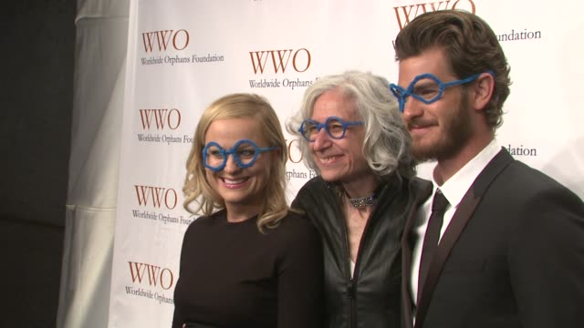 amy poehler jane aronson and andrew garfield at worldwide orphans 15th anniversary benefit gala at cipriani wall street on november 13 2012 in new... - cipriani wall street stock videos & royalty-free footage