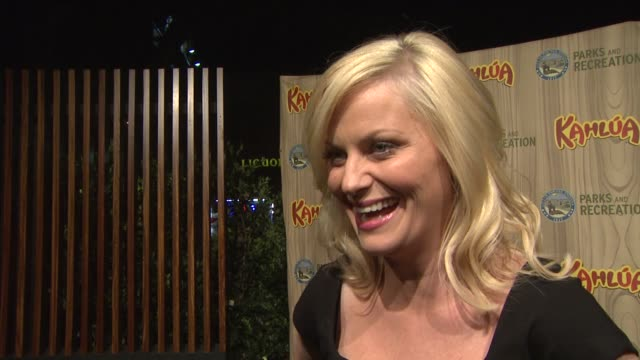 amy poehler on if she is nervous for the show's premiere, the funniest moment between takes, the show's premise, how she created the character. at... - エイミー・ポーラー点の映像素材/bロール