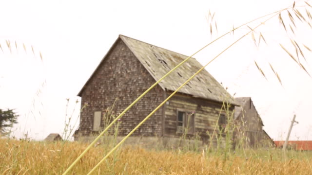 An abandoned barn in an empty field on a cloudy day.