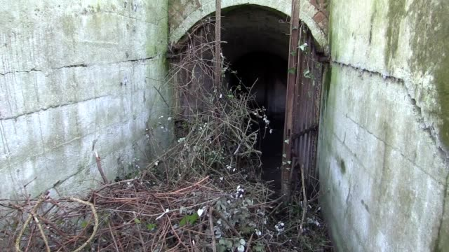 An abandoned coastal fort which boasts six gun emplacements concrete pill boxes and an observation tower has been bought by two friends who want to...