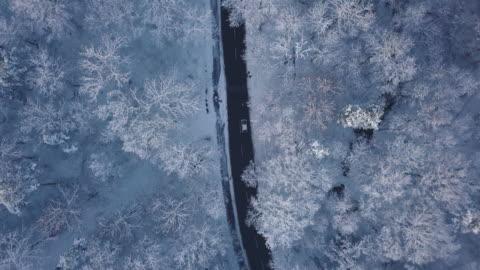 stockvideo's en b-roll-footage met een antenne road trip over besneeuwde landschappen - sweden