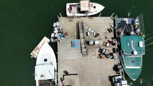 vidéos et rushes de an aerial view from a drone shows lobster boats and their crews at work on the conary cove lobster co inc wharf in the gulf of maine on july 01 2019... - pêcheur