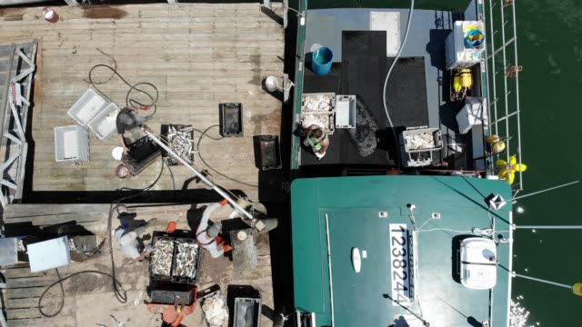 an aerial view from a drone shows lobster boats and their crews at work on the conary cove lobster co inc wharf in the gulf of maine on july 01 2019... - water cooler stock videos & royalty-free footage