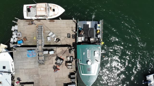 vídeos de stock e filmes b-roll de an aerial view from a drone shows lobster boats and their crews at work on the conary cove lobster co inc wharf in the gulf of maine on july 01 2019... - lagosta