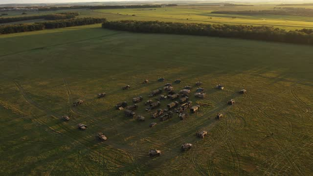 """vídeos de stock, filmes e b-roll de an aerial view of a uk task group's temporary camp within an encircling barricade of wagons, or """"laager"""", during a mission rehearsal exercise ahead... - ilhas do oceano atlântico"""