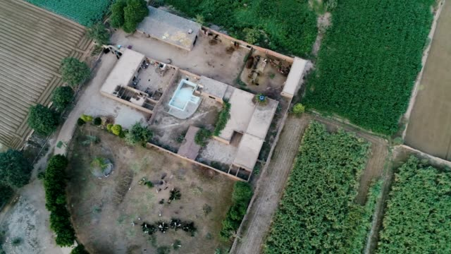an aerial view of farmhouse and agricultural land through drone - punjab pakistan stock videos & royalty-free footage