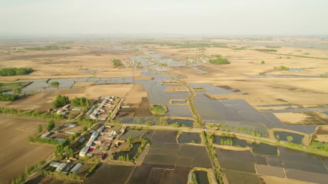 an aerial view of rice fields on may 16 2017 in wuchang heilongjiang province china wuchang is a major rice growing area in northern china - endast en pensionärsman bildbanksvideor och videomaterial från bakom kulisserna