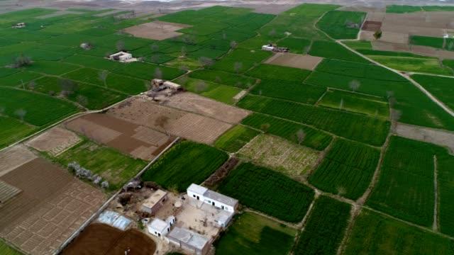 an aerial view of road passing through the cultivated fields - punjab pakistan bildbanksvideor och videomaterial från bakom kulisserna
