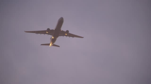 an aeroplane flies overhead - flugzeugflügel stock-videos und b-roll-filmmaterial