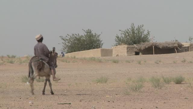 an afghan boy rides his donkey toward a stone building. - provinz helmand stock-videos und b-roll-filmmaterial